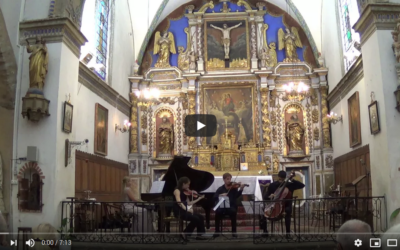 Impressions from recitals at summer music festivals in Ukraine, Montenegro and France